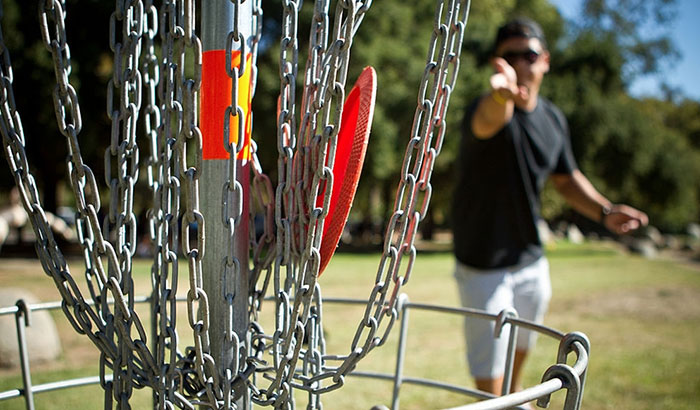 best tomahawk disc golf