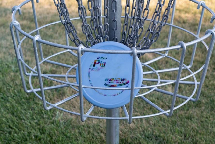 Pig disc in basket