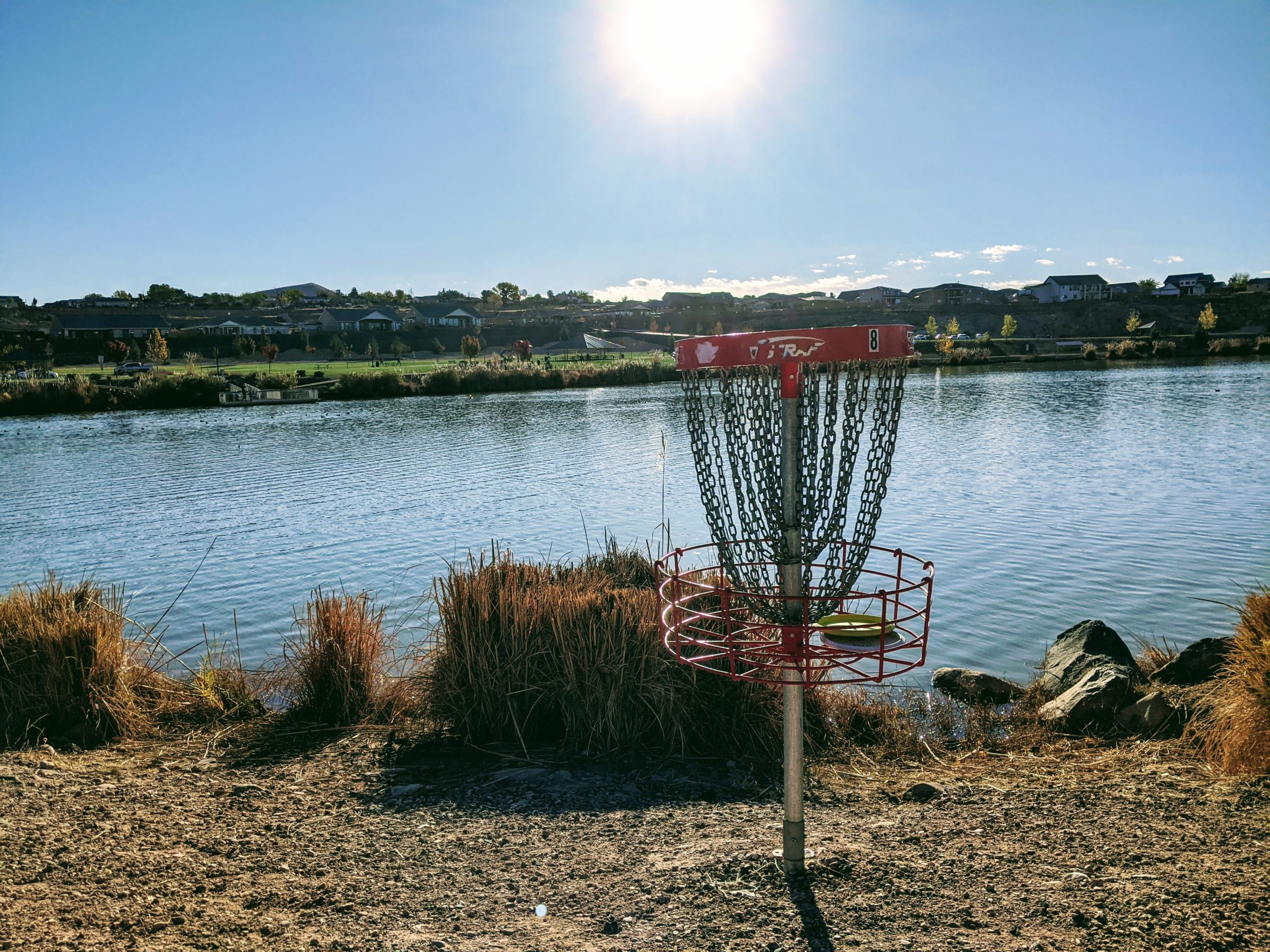 Death Putt Disc Golf Basket